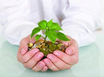 Государственные инвестиции в сельское хозяйство в 2018 году